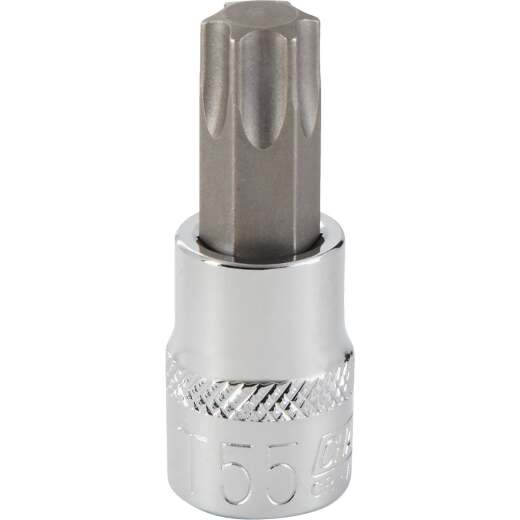 Channellock 3/8 In. Drive T55 6-Point Torx Bit Socket
